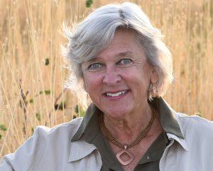 Sonja Wendt